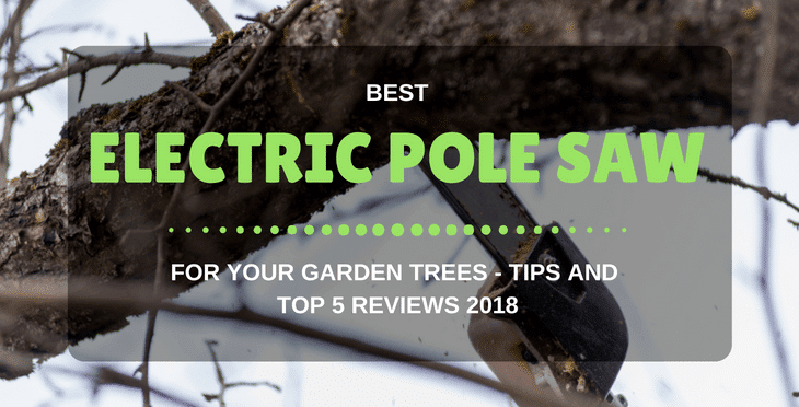 Best Electric Pole Saw For Your Garden Trees – Tips And Top 5 Reviews 2018