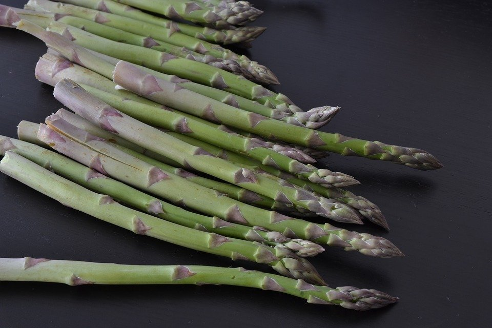 Newly Harvested Asparagus on a black table during the harvesting season after successfully growing asparagus