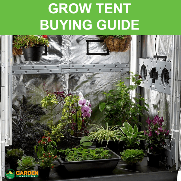 Best Grow Tent For The Money – 2018 Reviews & Buying Guide