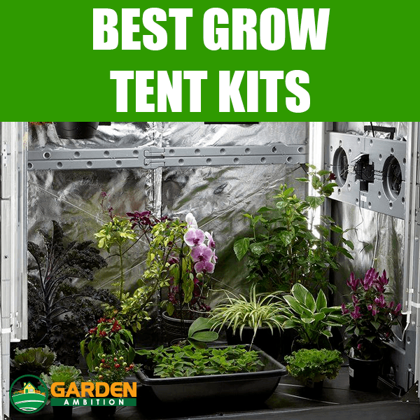 5 Best Grow Tent Kits: Complete Reviews Of The Best Brands 2018