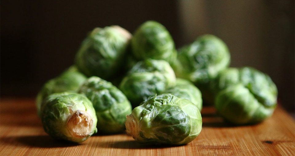 how to grow brussel sprouts - how to grow brussel sprouts on the table