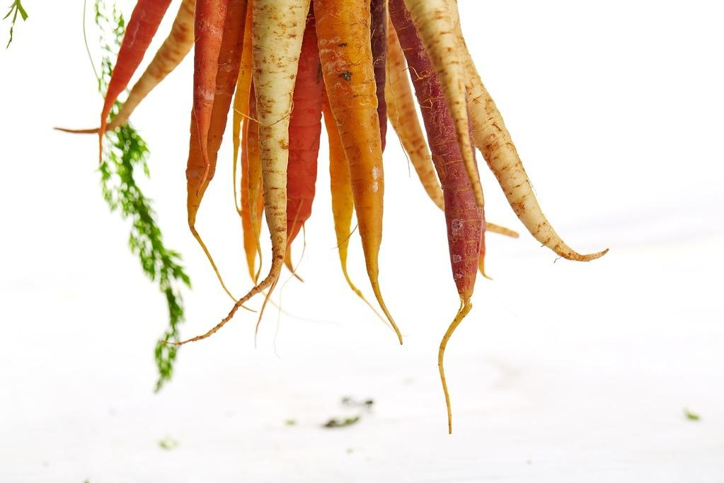 Ugly or twisted carrots due to overcrowding