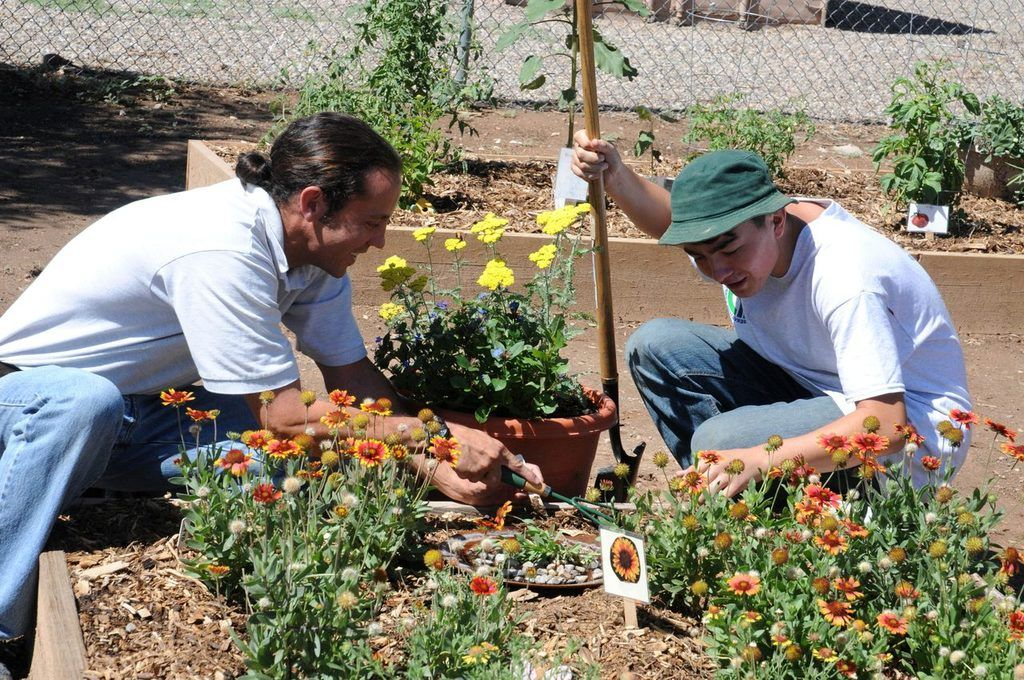 neighbors  enjoy planting together in a community garden
