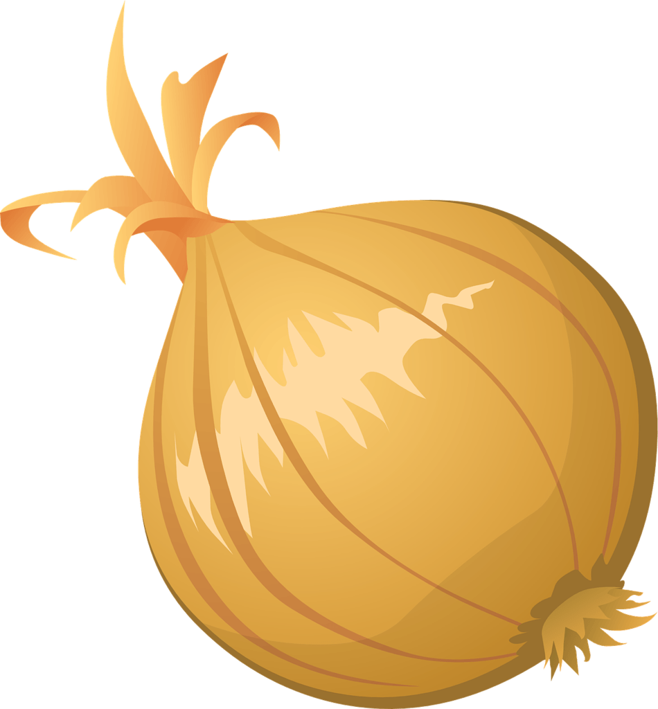 Onion that easily grow for at home vegetable gardening