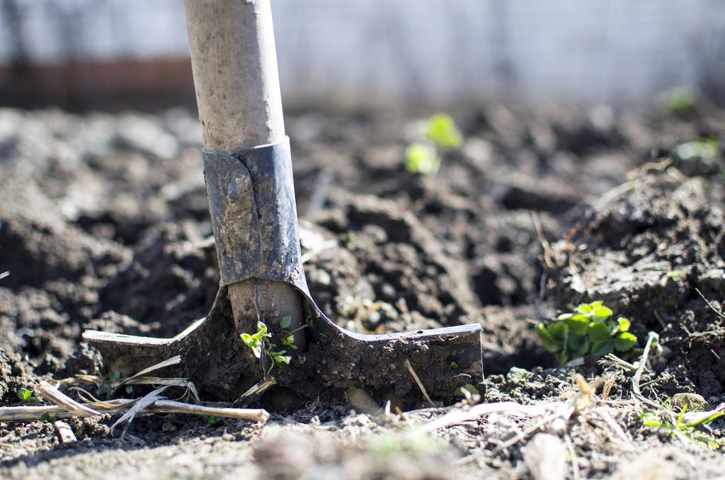 digging the soil with a shovel helps improve the quality of your garden soil