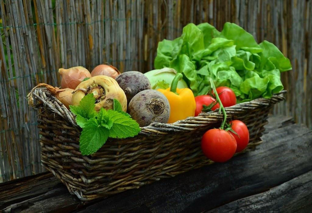 Fresh vegetable harvest from the garden