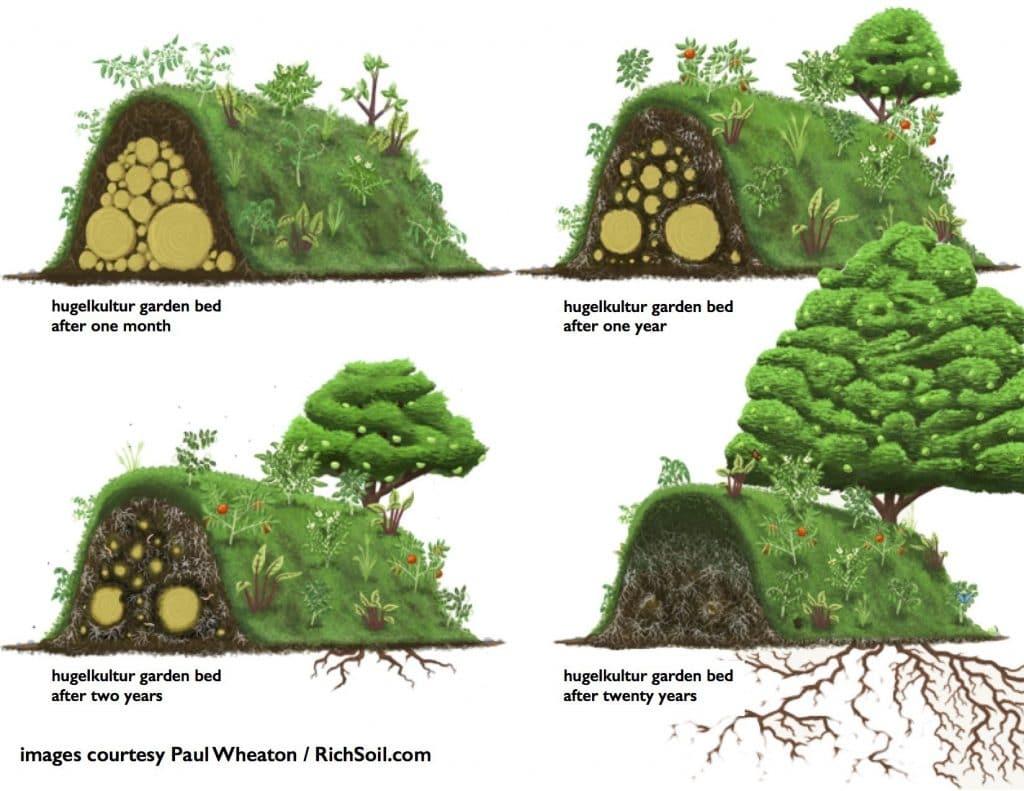 Mound multure