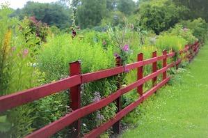 Red garden fence near plants