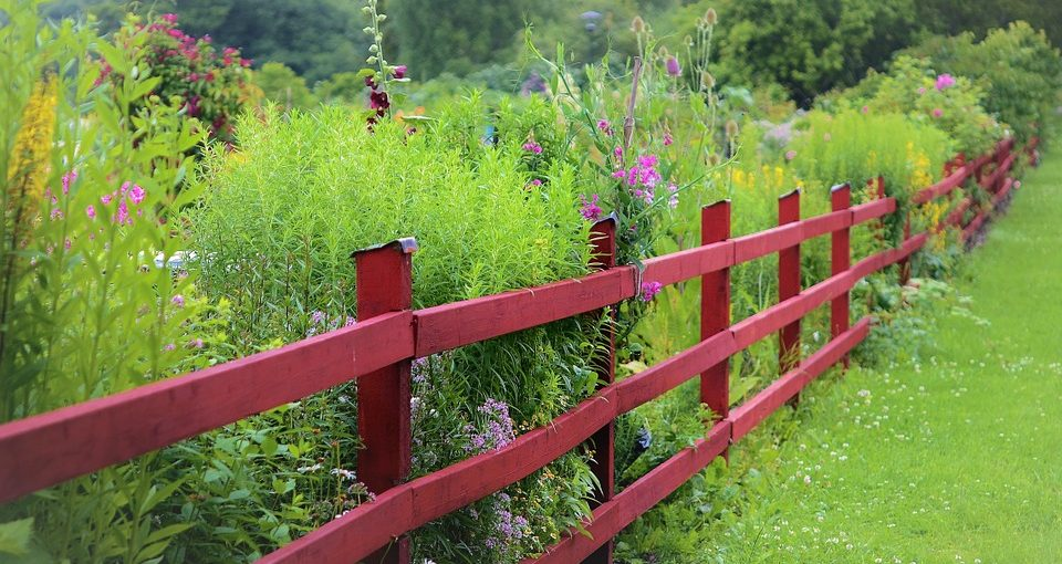Red garden fence near plants