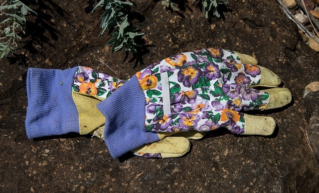 a pair of gardening gloves lying on ground