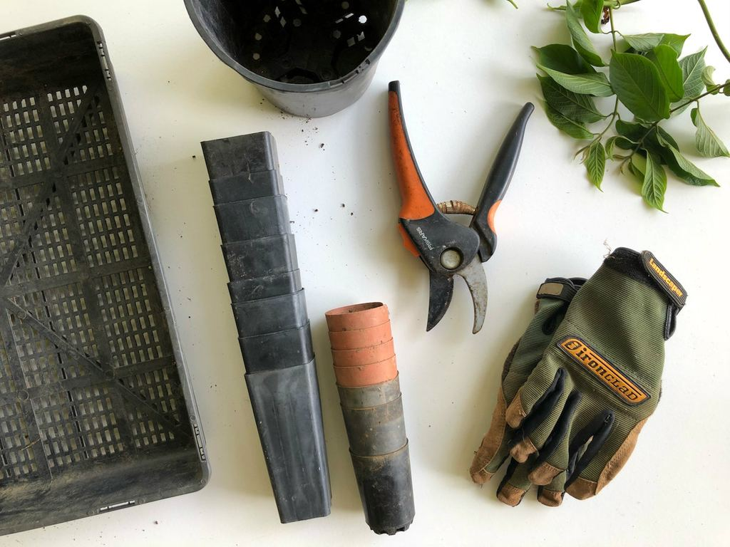gardening gloves, pruning shears and other gardening tools
